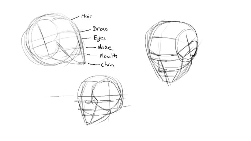 head construction sketches part 1