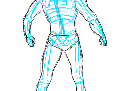 Skeleton Tracing Anatomy Study