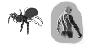 spiderstudies