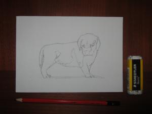 PuppyInAcrylics1