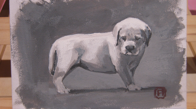 Acrylic Painting 2: Labrador Puppy