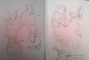 RabbitPencilSketches1