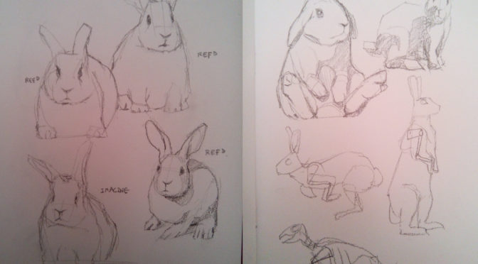 Project JKF-1: Rabbit Pencil Sketches on 2nd Feb 2017